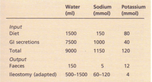 Input and output of water and electrolytes in the gastrointestinal tract over 24 hours.