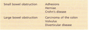 Some causes of intestinal obstruction.