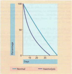 Patterns of survival of normal red cells and cells affected by haemolysis, using labelling of red cells with 51Cr.