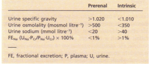 Criteria for distinction between prerenal and intrinsic causes of renal dysfunction.