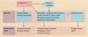 Pathogenesis and radiological features of renal osteodystrophy.