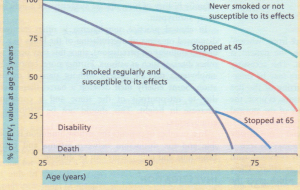 Influence of smoking