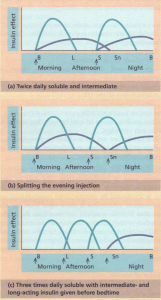 Insulin regimens. Profiles of soluble insulins are shown as blue lines and intermediate- or long-acting insulin as purple lines. The arrows indicate when the injections are given. (a) Twice daily soluble and intermediate. (b) Splitting the evening injection. (c) Three times daily soluble with additional intermediate or long-acting insulin given before bedtime. B, breakfast; L, lunch; S, supper; Sn, snack (bedtime).