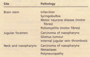 Principal causes of lesions of the ninth, tenth and eleventh cranial nerves
